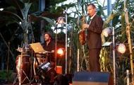 live-musiker-firmen-event-hochzeit-geburtstag
